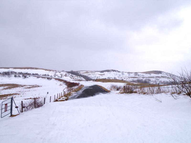冬の荒川高原を歩く。。。_f0075075_3504.jpg
