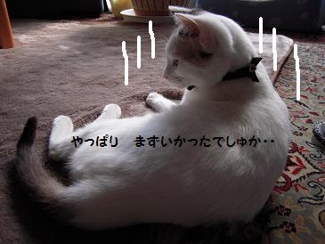 c0139488_1721018.jpg