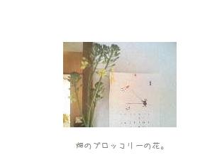 b0120001_21535119.jpg