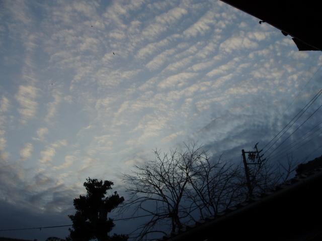 冬の空は高いが、その高さはちょうどいい。_c0010936_1330171.jpg
