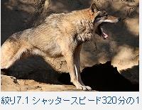 f0053757_0534848.jpg