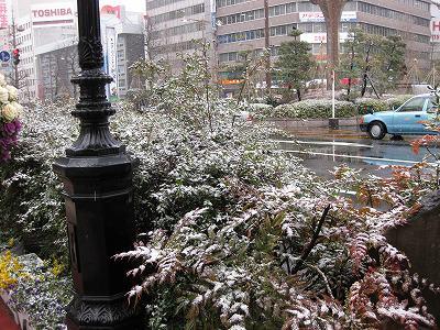 寒い…_c0190960_7324277.jpg