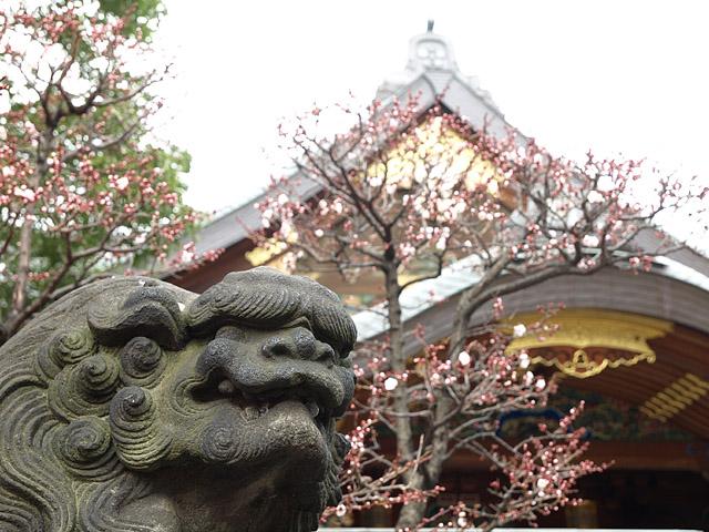 湯島天神 御礼参り (2/15)_b0006870_22324411.jpg