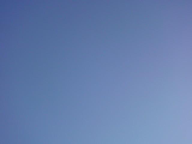 「良い天気♪♪真っ青な空」」_e0051174_8124228.jpg