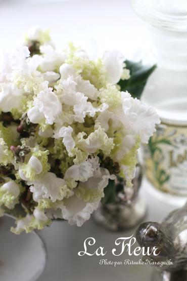 シクラメンの花束_f0127281_063260.jpg
