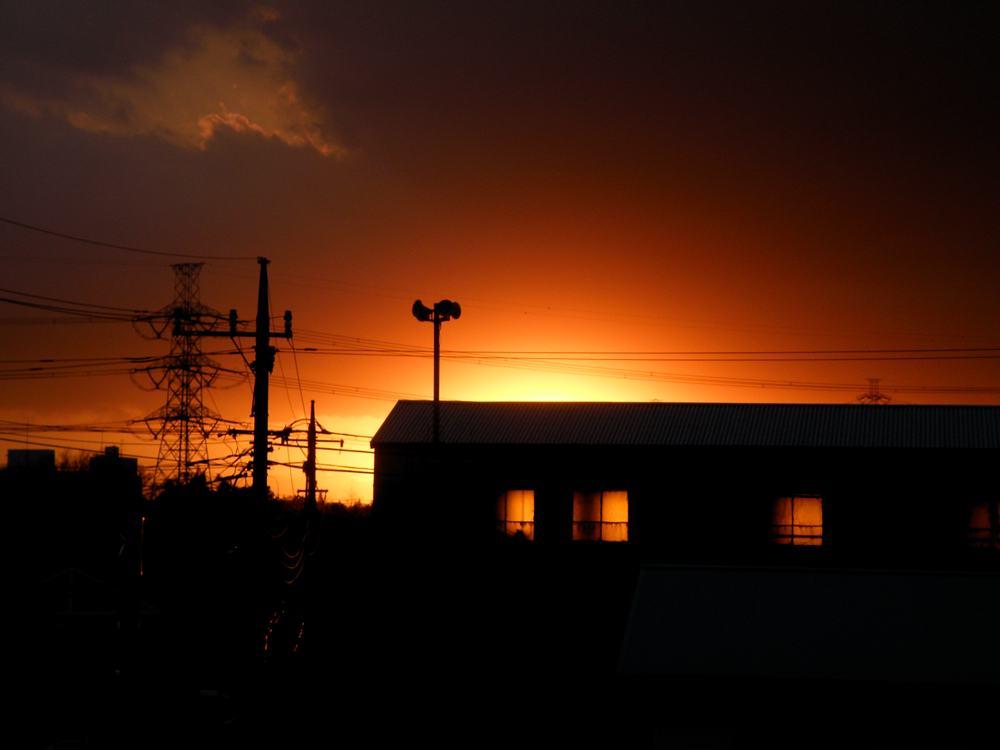 シロハラ/火事です_b0024798_5595051.jpg