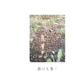 b0120001_20385168.jpg