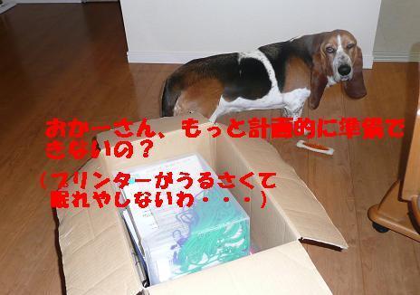 f0121712_11175337.jpg