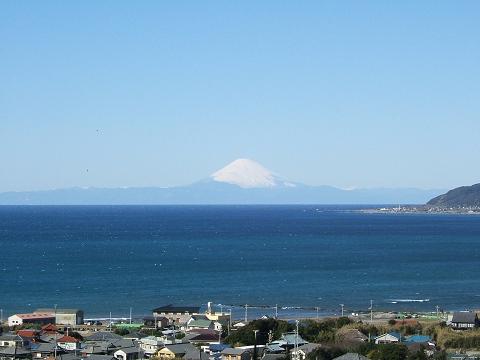 館山 野鳥の森から見た富士山_e0089232_19401118.jpg