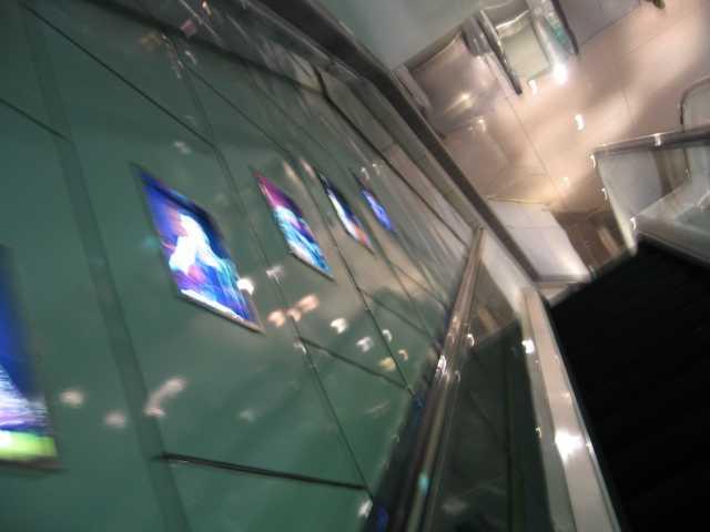 2009年2月香港旅行② 色っぽい香港_e0052736_1905141.jpg