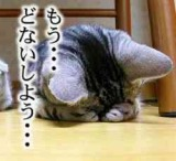 c0042941_2031111.jpg