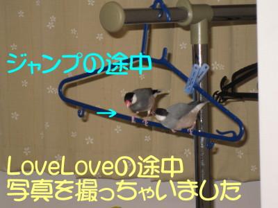 b0158061_2144060.jpg