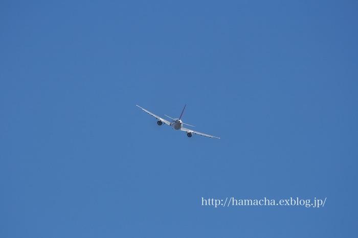 Airbus A300-600R_c0158775_1859378.jpg