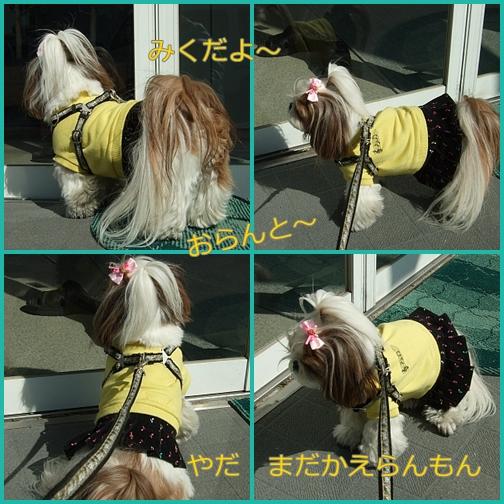 f0058277_2012956.jpg