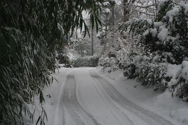 冬の旅2009_e0082981_0323935.jpg