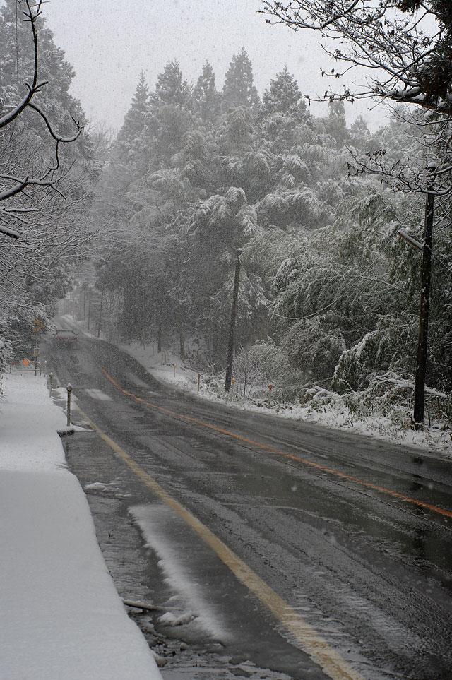 冬の旅2009_e0082981_037404.jpg