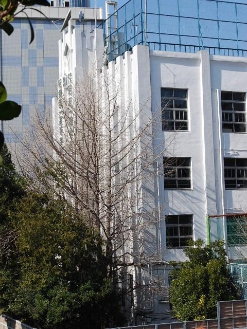 東京・昭和第一高等学校(建築家・木田保造作品探訪)_f0142606_2130543.jpg