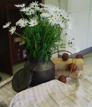 蕗のとう通信22  2009年2月19日(木)_b0129807_2227228.jpg