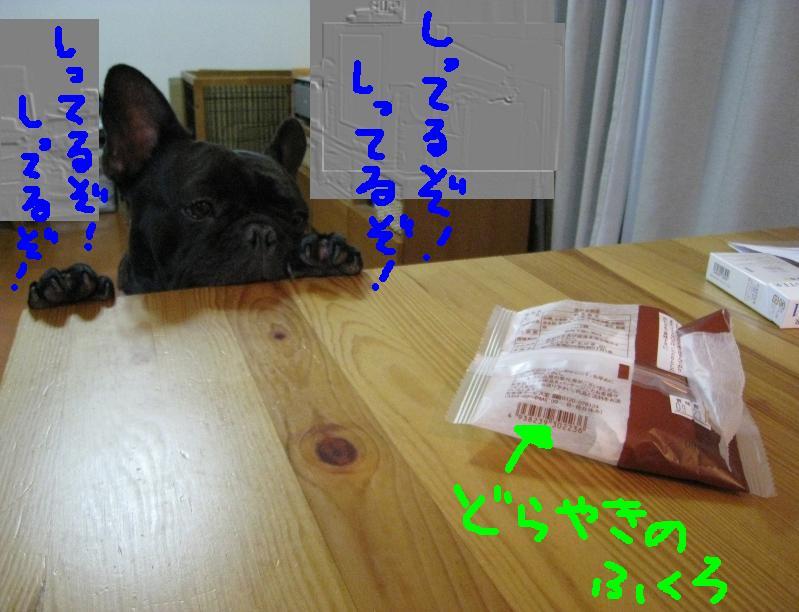 c0113109_012989.jpg