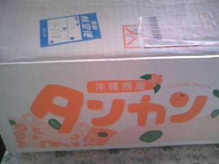 よみがえる沖縄!_c0140516_1245597.jpg