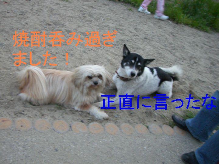 f0053952_17132051.jpg