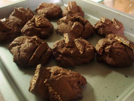夜中のクッキー。続編_c0119259_15967.jpg