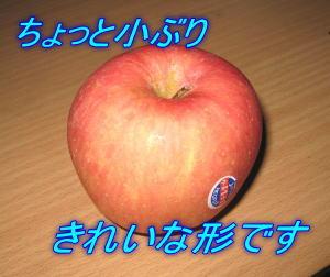 2月19日 水晶富士王♪_d0086871_16234958.jpg