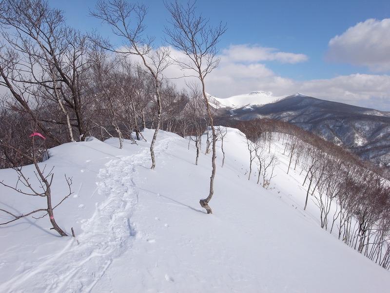 2月19日、多峰古峰(たっぷこっぷ)山_f0138096_15113041.jpg