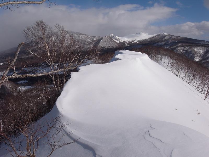 2月19日、多峰古峰(たっぷこっぷ)山_f0138096_1512715.jpg