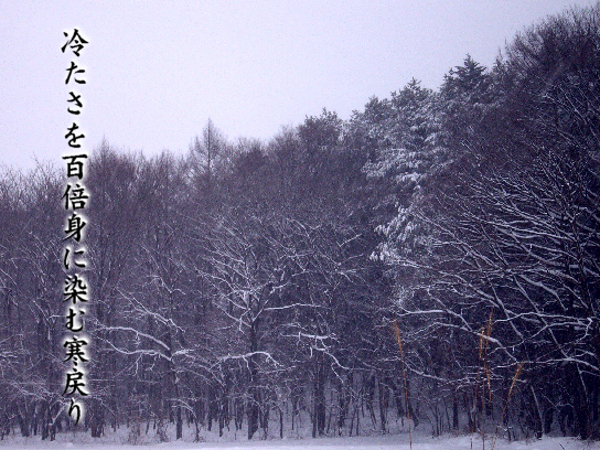 寒戻る_e0099713_19581168.jpg