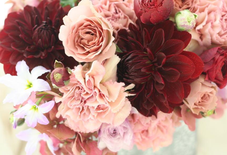 ダリア ブラックルビー  花の名前_a0042928_2285196.jpg