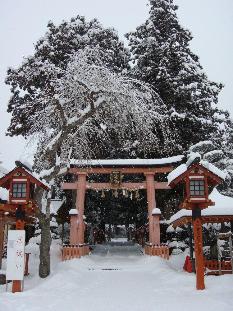 大雪_c0111229_1740372.jpg