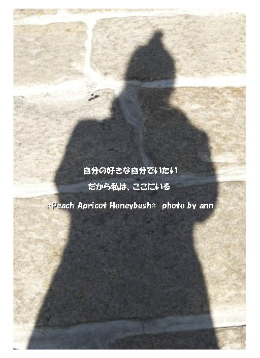 b0126044_16351079.jpg