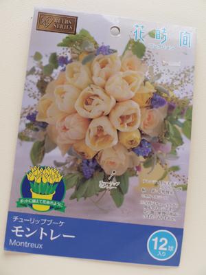 アイリスオーヤマ 花時間コレクション チューリップブーケ_e0158653_239188.jpg