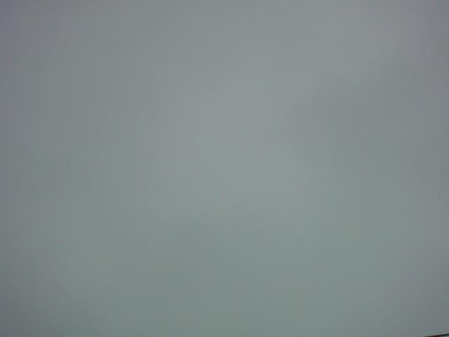 「冷たい雨…春は何処へ…。」_e0051174_737932.jpg