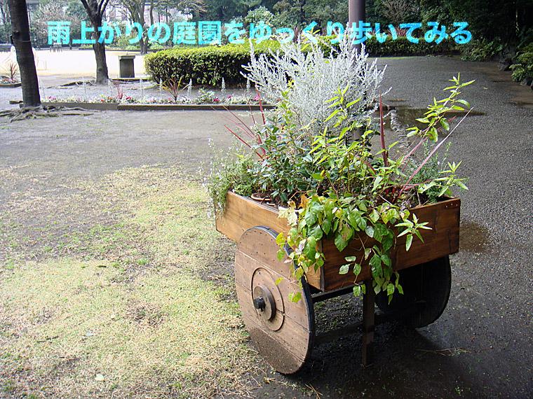b0091575_19533831.jpg
