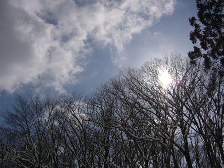 兵庫県のハチ北へ滑りに行ってきました。_e0173183_15132180.jpg