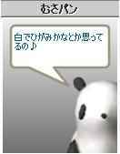 b0003089_0315852.jpg