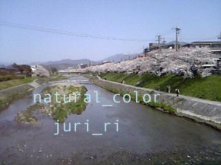c0063808_1394927.jpg
