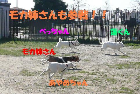 f0121712_738101.jpg
