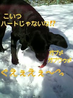 f0148927_18595174.jpg