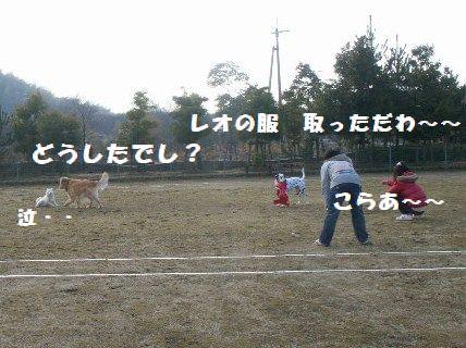 b0127531_22161.jpg