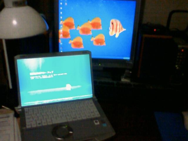 新しいパソコンが届いた(・ω・)_c0137037_283485.jpg