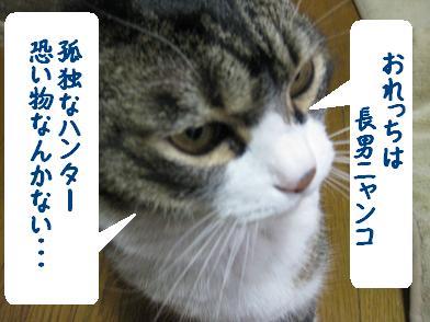 b0151748_17582131.jpg