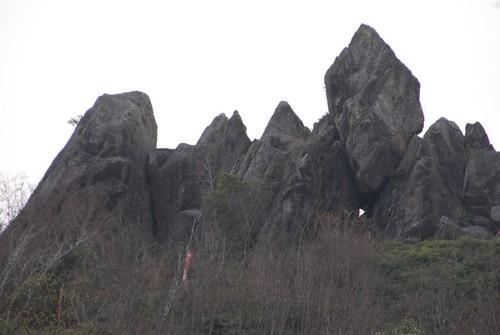 桜山の岩_b0114756_19272917.jpg