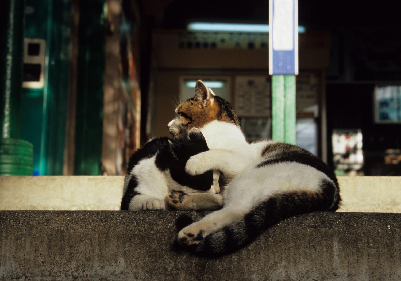 愛ある冬の日_c0181457_237754.jpg