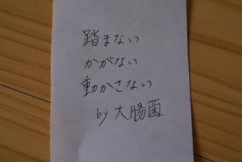 b0131279_1273464.jpg