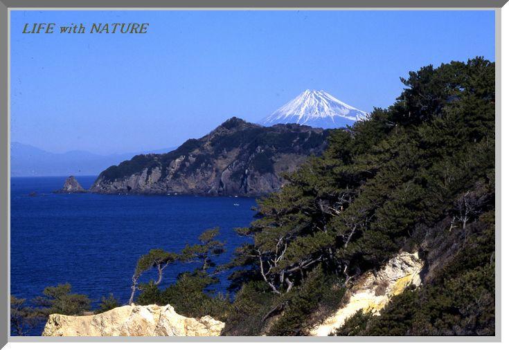 富士眺望_b0093088_742273.jpg