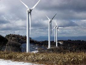 風力発電かせぎどき_b0145296_962374.jpg