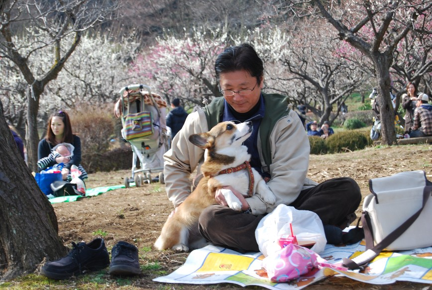 薬師池公園梅林 2月15日_f0101201_2251245.jpg